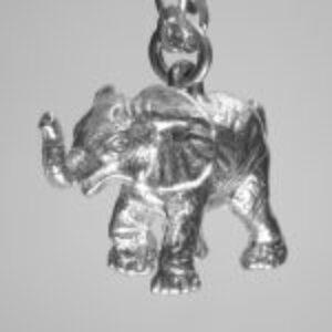 AMAZON ELEPHANT TSH-SA-P- 705 BOTTOM LIGHTED FACING RIGHT CLEAR DSC02322